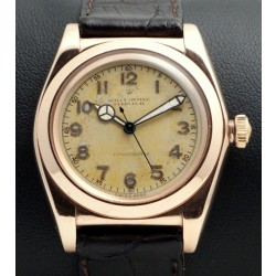 Pink Gold/Stainless Steel Tropical Bubbleback Ref. 3696
